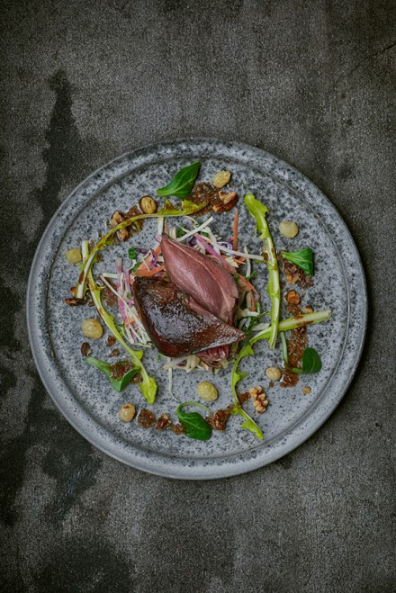 Delicious wild wood pigeon salad