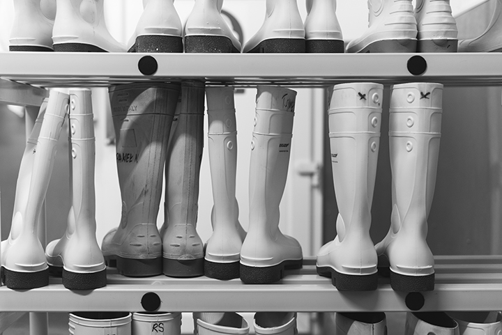 ff_wellies_bw
